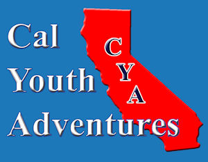 Cal Youth Servcies